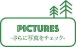 pictureslogo