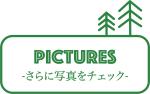 pictureslogo